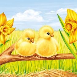 Easter Starts Chicks Napkins