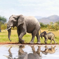 Elephants Napkins