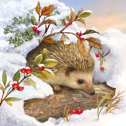 Hedgehog In Snow Napkins