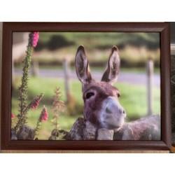 Country Matters Donkey Lap...