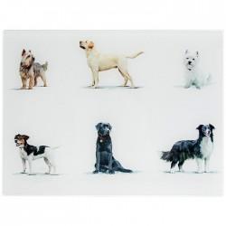 MacNeil Dogs Glass Worktop...