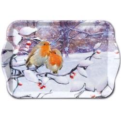 Robins on Branch Christmas...