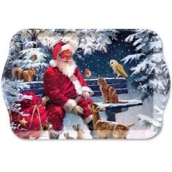 Santa on Bench Christmas...