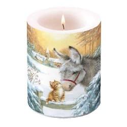 Donkey and Kitten Pillar...
