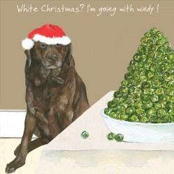 Windy - Comical Christmas...
