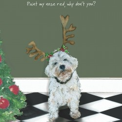 Red Nose - Comical...