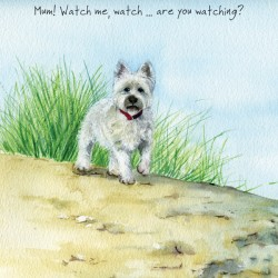 Watch Me - Digs and Manor...