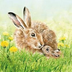 Hare Family Napkins