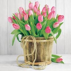 Tulips in Bucket Napkins