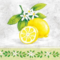Lemon Branch Napkins