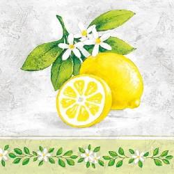 Lemon Branch Napkins